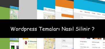 WordPress Tema Sil