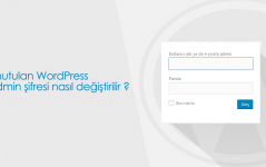 Unutulan WordPress Admin Şifresi