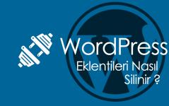 WordPress Eklentileri Nasıl Silinir