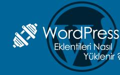 WordPress Eklentileri Nasıl Yüklenir