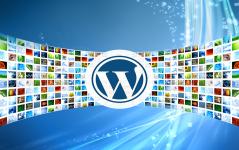 WordPress Galeri Nasıl Eklenir