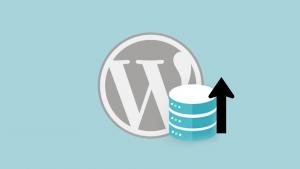 WordPress Veritabanı Geri Yükleme
