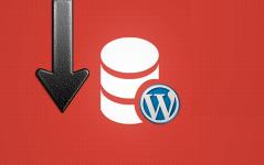 WordPress Veritabanı Nasıl Yedeklenir