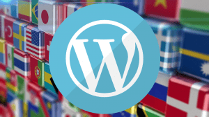 WordPress Admin Paneli Dilini Değiştirme