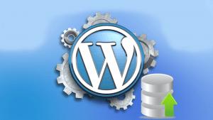 WordPress Geri Yükleme