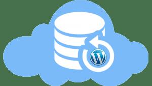 WordPress Nasıl Yedeklenir