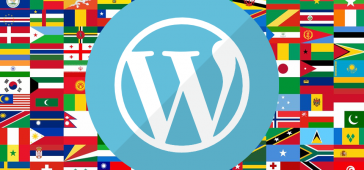 Çok Dilli WordPress Sitesi