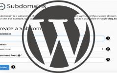 Subdomaine WordPress Kurulumu