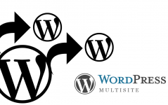 WordPress Multisite Kurulumu
