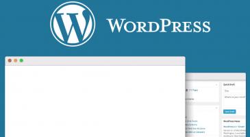 WordPress Admin Paneli Beyaz Sayfa Sorunu