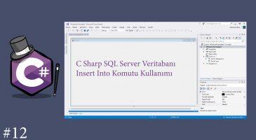 C Sharp SQL Insert Kullanımı