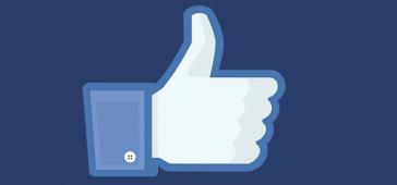 Facebook Sayfa Begeni