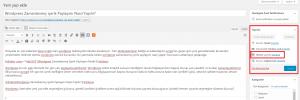 Wordpress Zamanlanmıs Icerik Paylasimi Nasil Yapilir 1 300x100